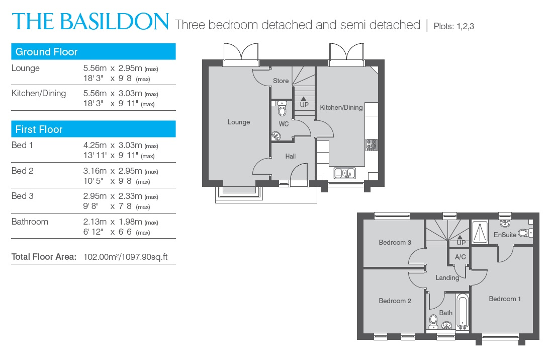 The Basildon